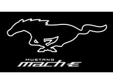 Mustang Mach-E Pony White