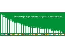 Så här många dagar räcker bioenergin i EU28.
