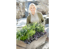 Victoria Skoglunds vårplantering