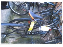 20190211-stolen-pedal-cycle-eastbourne-sxp201901310496-best-res