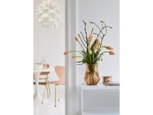 Franske tulipaner og magnolia