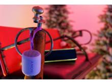 Sony Christmas