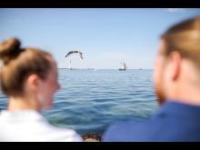Strand Kieler Förde