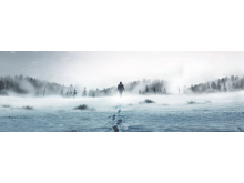 ARCTIC ALONE_HISTORY