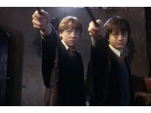 Harry Potter och Hemligheternas kammare8