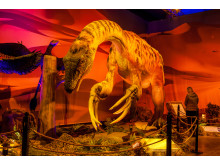 Dinosaurs The Exhibition