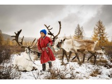 The child and the reindeers