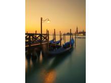 Alphaddicted_Venedig_von Sony 01