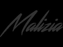 Logo Team Malizia