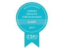 Medaljer SKI Elnät B2B 2017