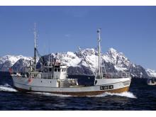 Fiskebåt Lofoten