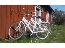 PnP_cyklar