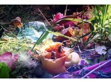 Blick in die Ausstellung - Carolas Garten - Yadegar Asisi (4)