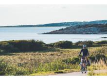 Cykling Kattegattleden