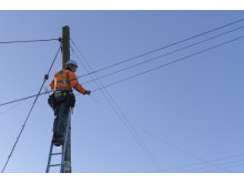 Engineer up pole (5)