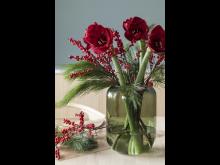 Amaryllis_Leaf vase_0623_f