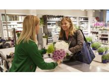 Mester Grønn butikk hovedbilde