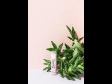 Cocosa Beauty Lipbalm