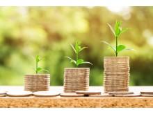 Motiv_Zurich Nachhaltiges Investment