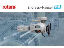 Rotork and Endress+Hauser