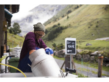 Alpkaese-Trail_Engelberg_Alp-Staefeli©Engelberg-Titlis-Tourismus