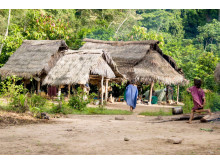 Ashaninka community