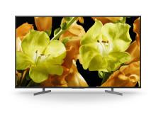 65 XG81 4K HDR TV