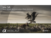 Live Talk Chris Schmid