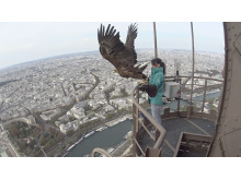 Eagle Action Cam