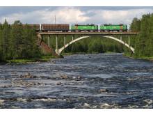 Green Cargo tåg över bro