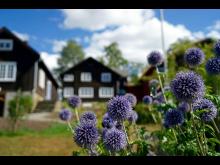 Sigri Undsets hjem Bjerkebæk
