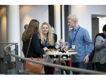 Industridagen 2013