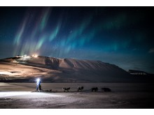 Dog sledding under the northern lights - an unforgettable adventure with Hurtigruten Svalbard.