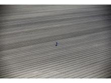 California drought, fot. Lucy Nicholson