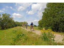 Radtour über den Elbdeich bei Rühstädt