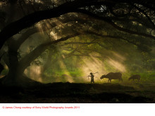 Copyright James Chong courtesy of Sony World Photography Awards 2011