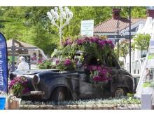 Lisebergs trädgårdsdagar.