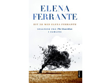 Omslag: Eit år med Elena Ferrante