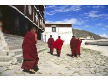 Drepung Monastery, Lhasa, Tibet - Erik Törner 2003