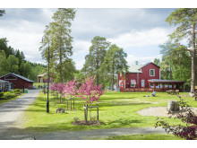 Umeå Energ Energicentrum