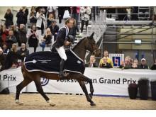 Elmia Scancinavian Horse Show