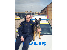 Årets polishund 2019