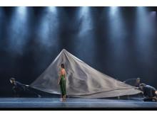 Siren_gästspel Dansk Danseteater pressbild 4