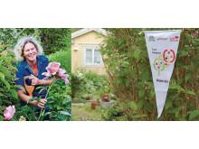 Träffa Tusen Trädgårdar året runt
