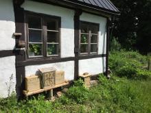 Här finns nya bihotell uppsatta på en av de nya boplatserna i Hörjel på Österlen. Foto: Björn Cederberg