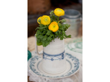 Ranunculus, gula blommor i vas