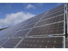 Regenerative Erzeugung deckt 100 Prozent des Stromverbrauchs im Bayernwerk-Netz für mehrere Stunden