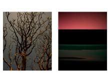 Der Blick auf Sylt aus der Serie Mystify auf Hahnemühle FineArt Baryta Satin