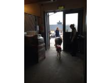 Efter intensiv vård kunde fölet Flingan äntligen trava hem med sin mamma