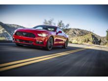Mustang North America